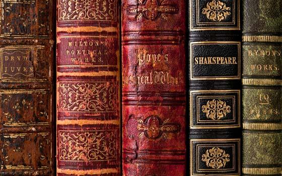 捷克,爱尔兰,葡萄牙,法国,美国,英国的一些知名图书馆.